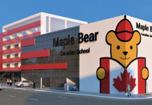 Maple-Bear-brusque